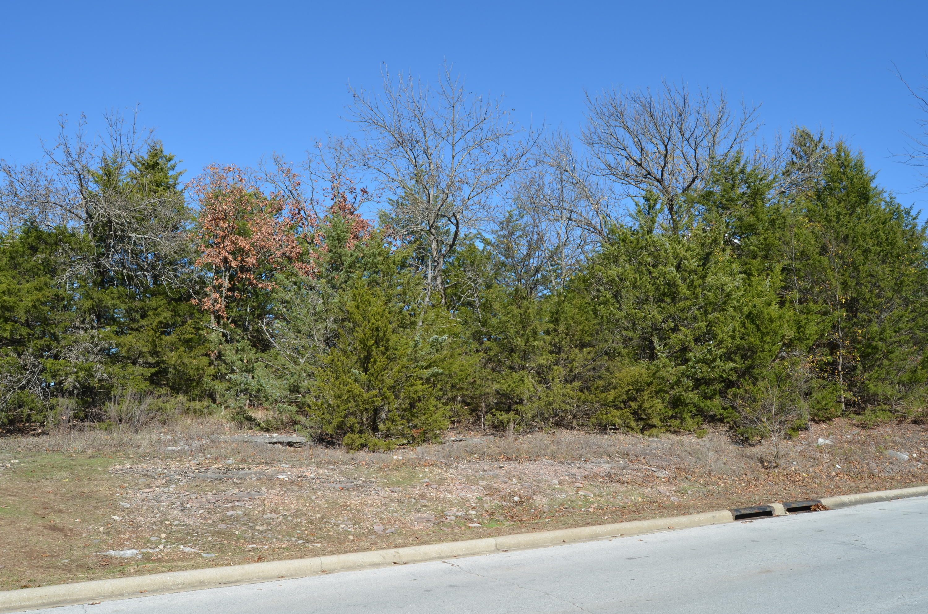 Lot 13 Split Rock Drive Hollister, MO 65672