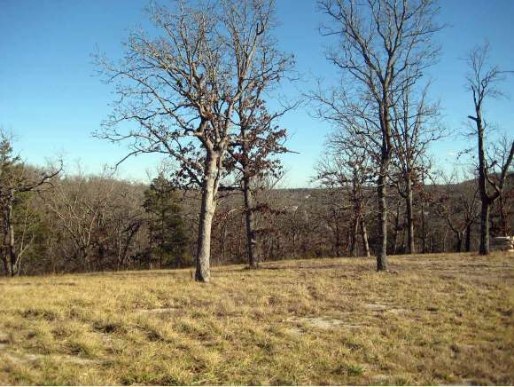 Lot 132 Beechwood Drive Branson West, MO 65737