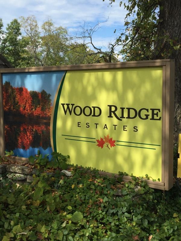 Lot 3 Wood Ridge Drive Blue Eye, MO 65611