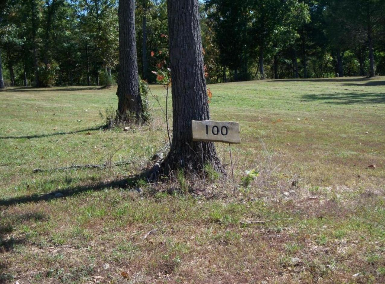 Lots Lots 100-101 Seven Pines Drive Saddlebrooke, MO 65630