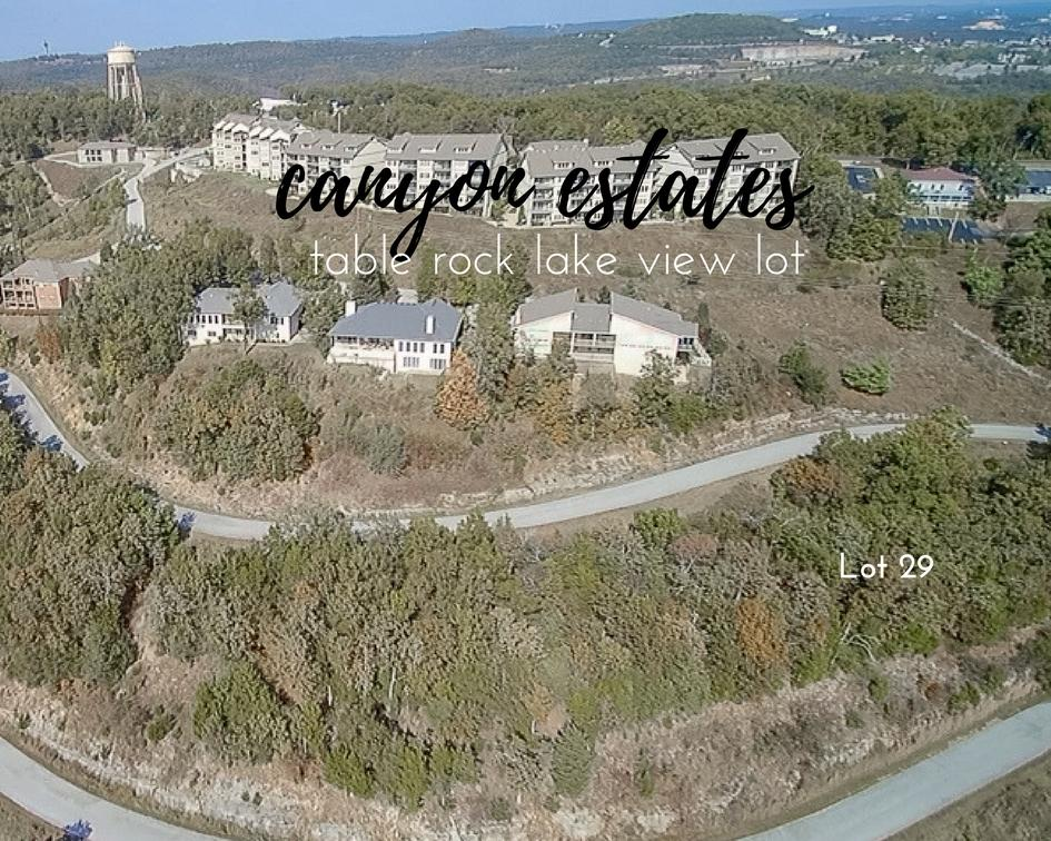 Lot 29 Canyon Estates Branson, MO 65616