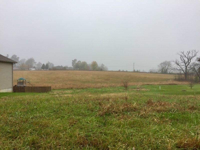 Lot 37 Spring Meadow Drive Rogersville, MO 65742