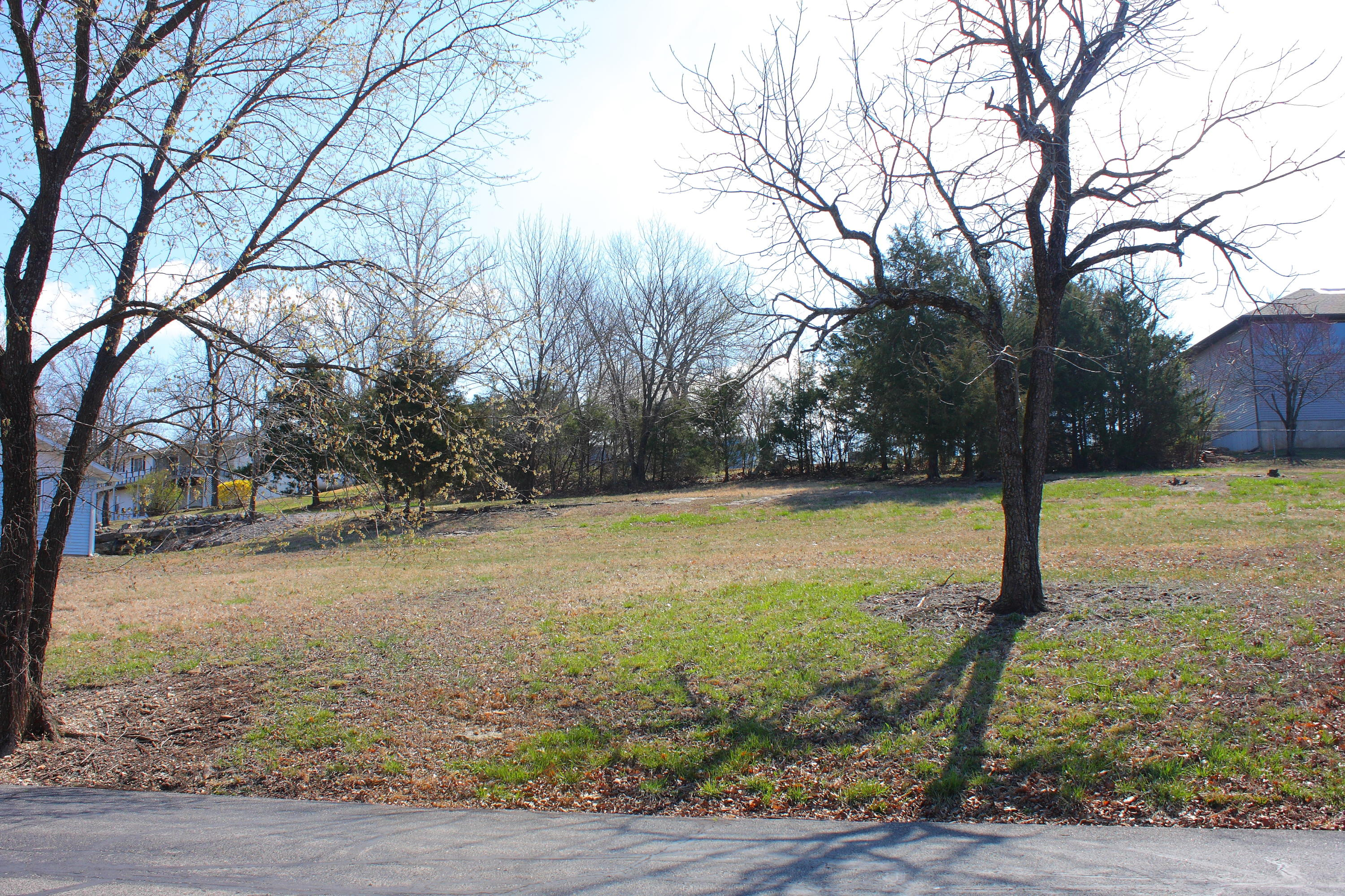 Lot 15 Woodland Ave Kimberling City, MO 65686