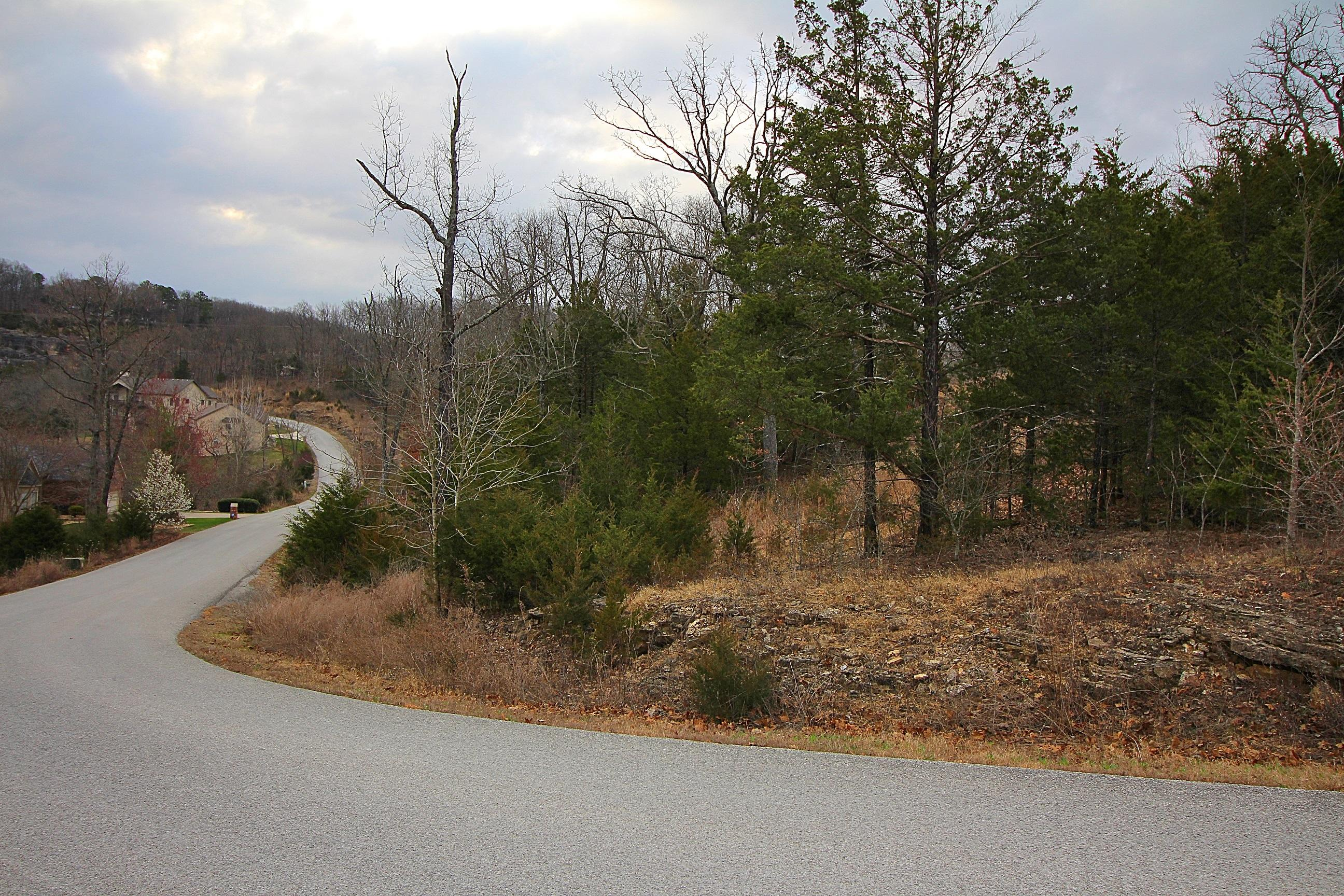 Lot 23 Silveroak Court Branson West, MO 65737