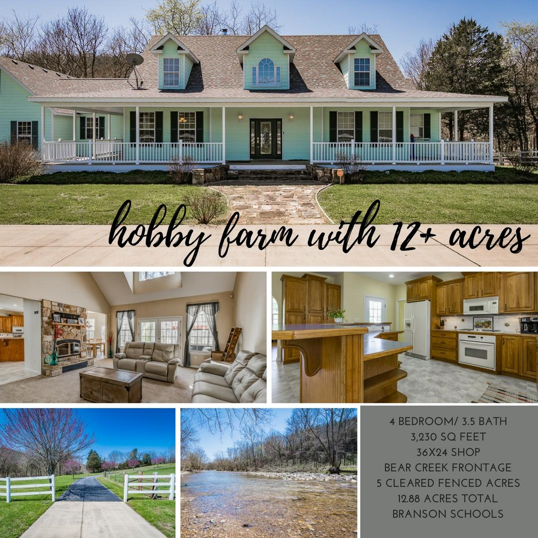 1283 Bear Creek Road Walnut Shade, MO 65771