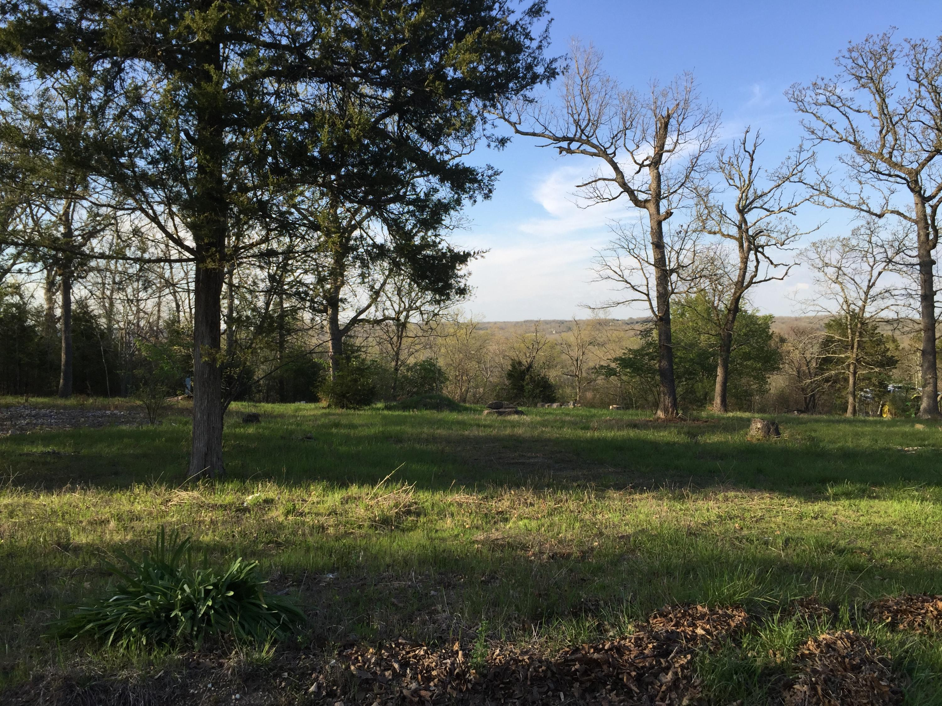 1287 Blackwell Ferry Road Kirbyville, MO 65679