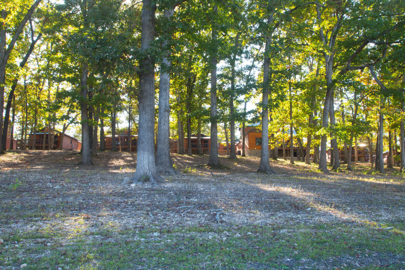 26 Cave Lane #Cabin 12 Indian Point, MO 65616