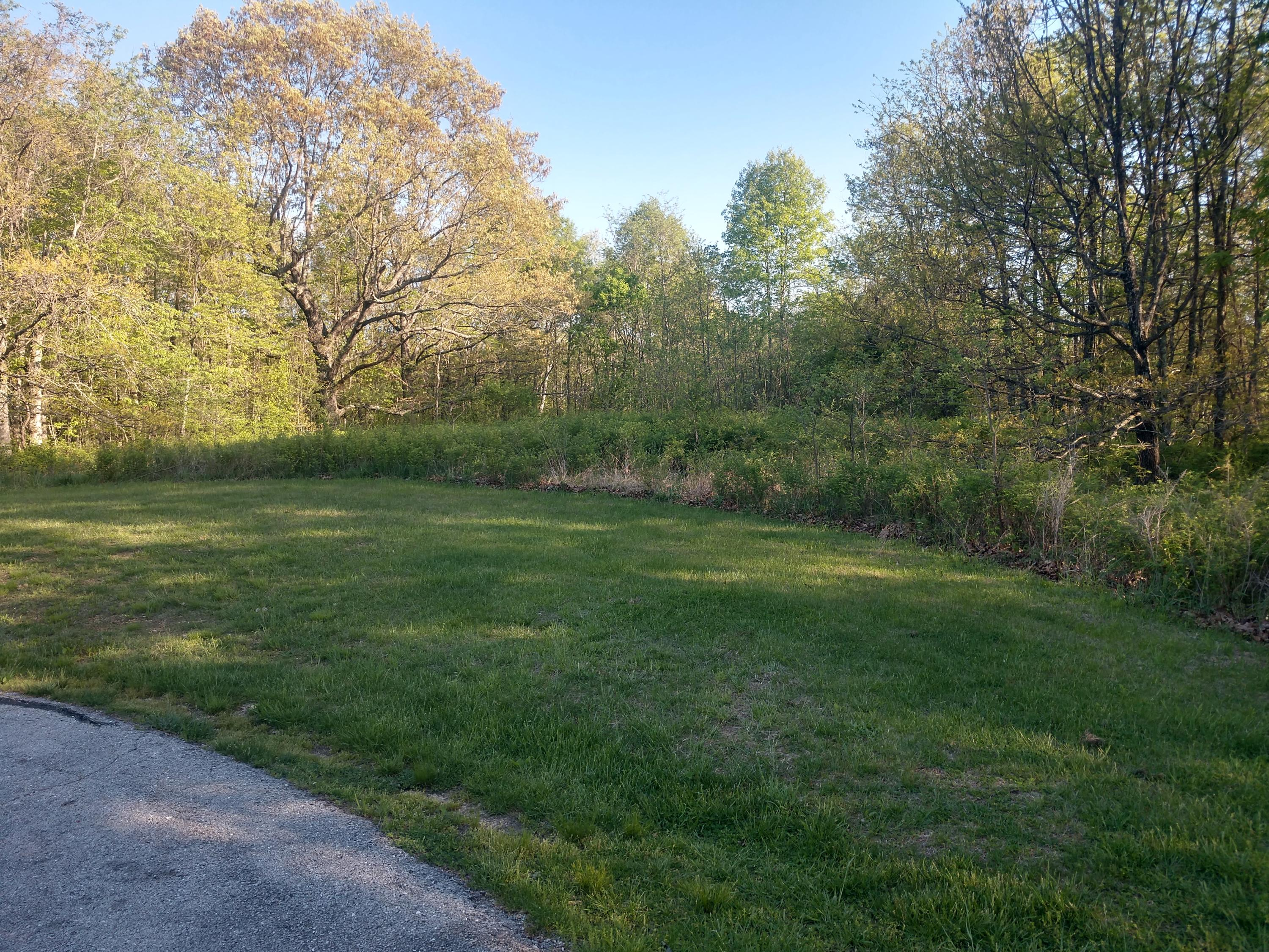 Lot 11 Valley View Road Rogersville, MO 65742