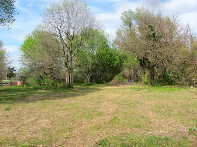 4250 South Farm Road 135 Springfield, MO 65810