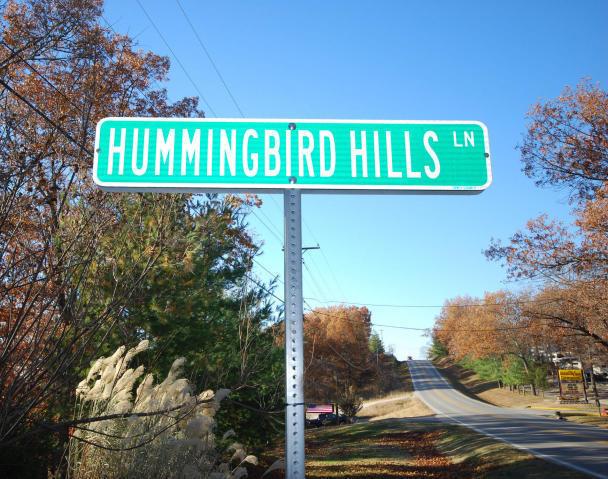 373 Hummingbird Hills Lane Branson, MO 65616
