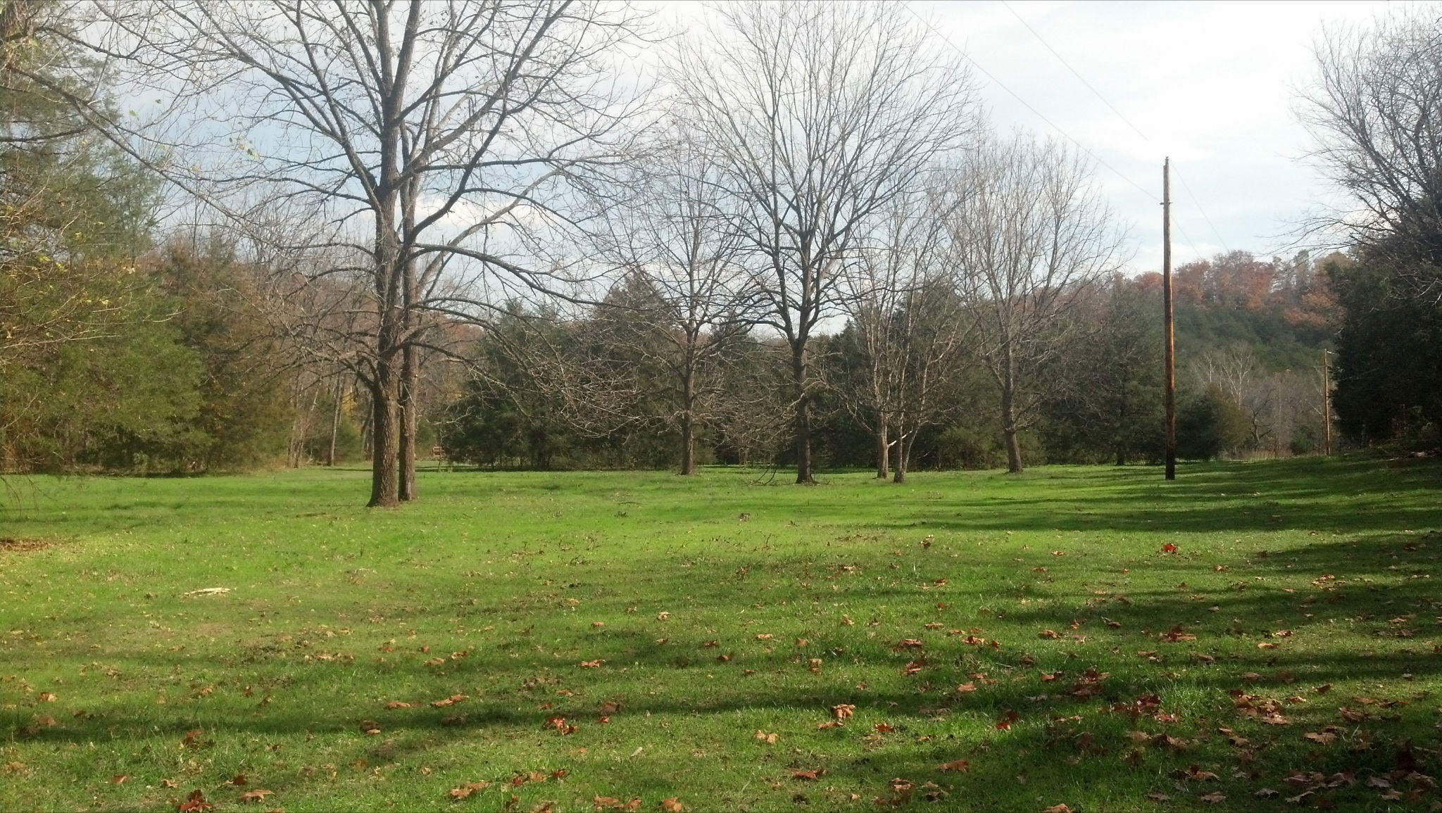 1251-C Great View Rd. ( Acres ) Highlandville, MO 65669