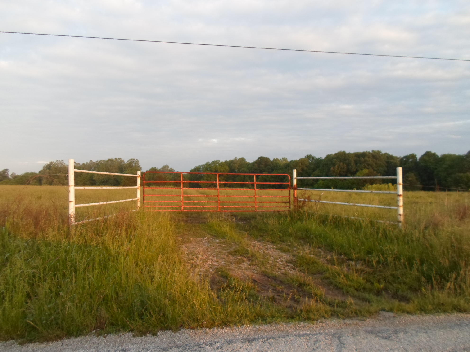 Tbd Shupbach Road Clever, MO 65631