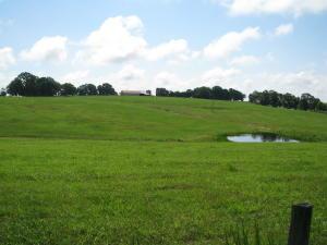 209 Barjack Trail, Thornfield, MO 65762