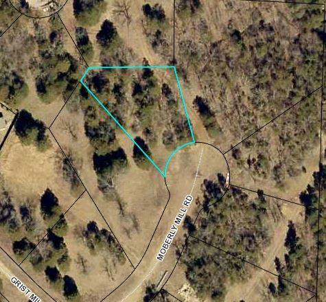 171 Lot 45 Moberly Mill Road Branson, MO 65616
