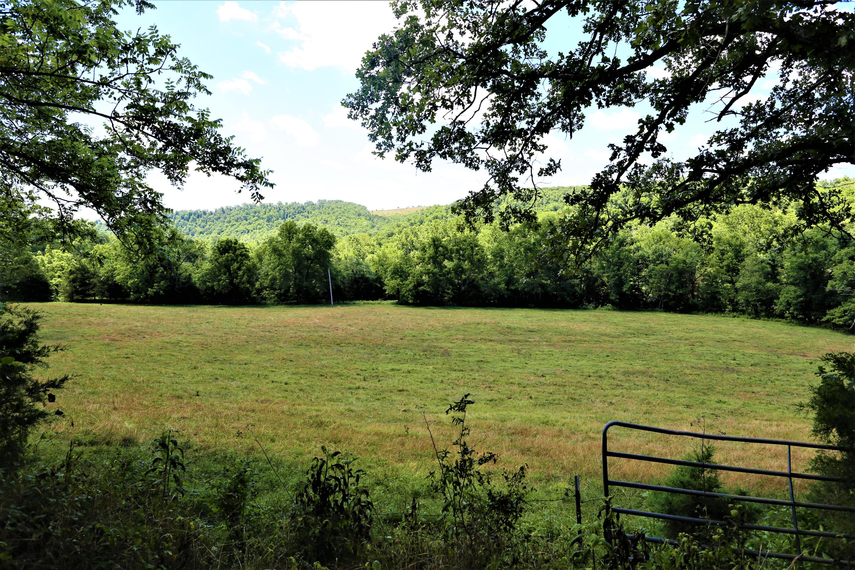 1597 Flat Creek Road Cape Fair, MO 65624