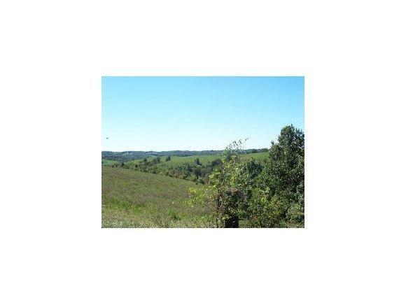 2003 Keystone Reeds Spring, MO 65737