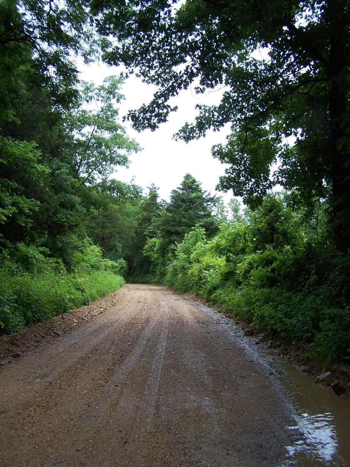 Tbd County Road 228