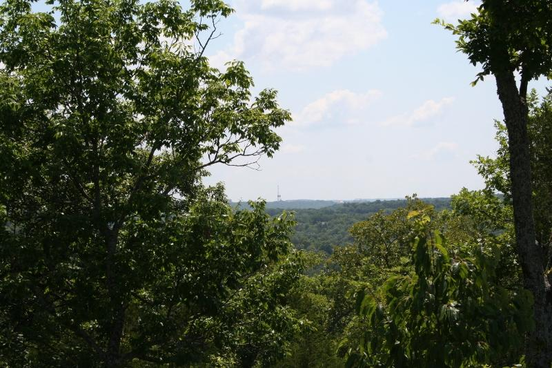 Lot 158 Forest Lake Branson West, MO 65737