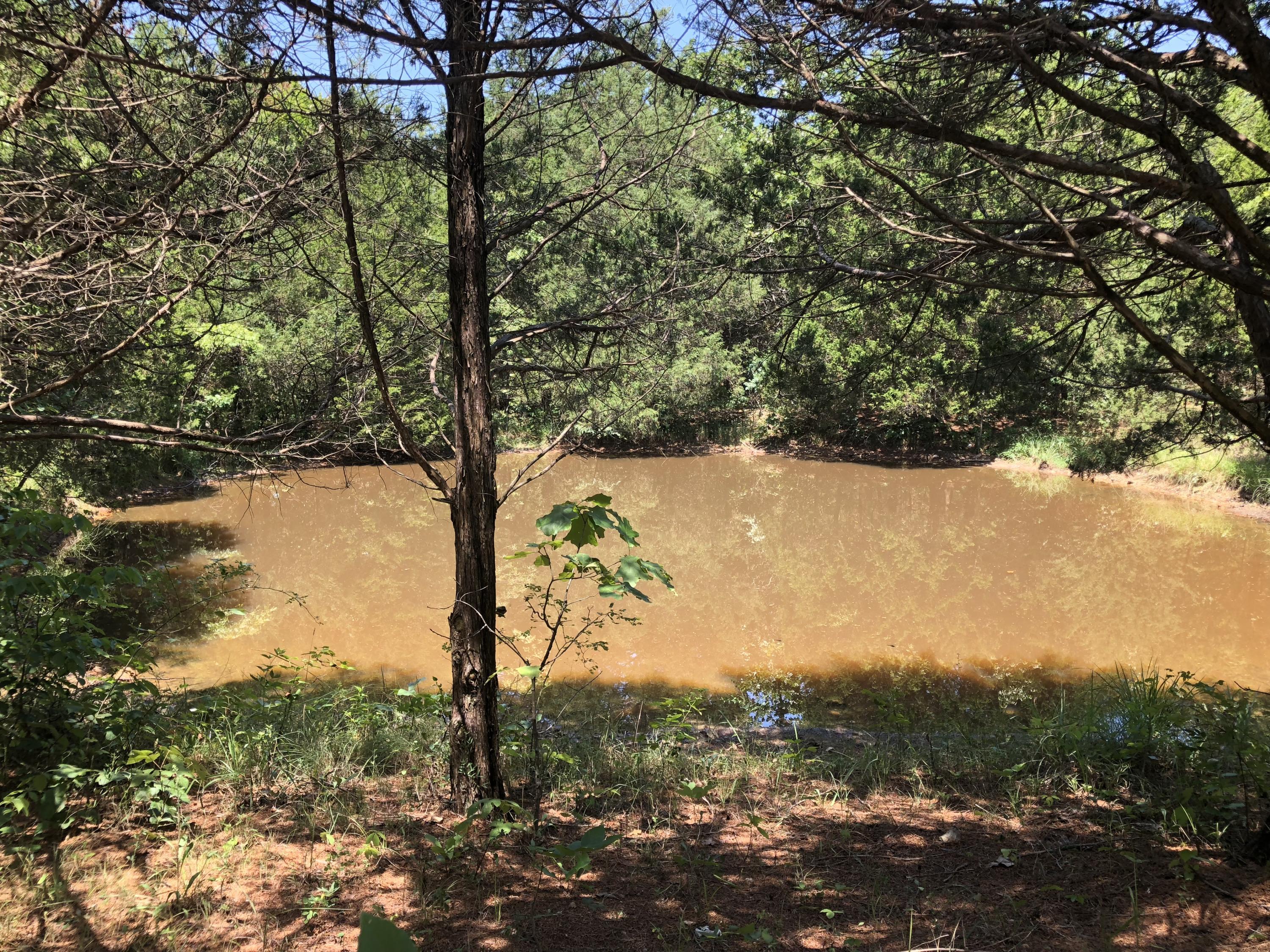 Cross Creek Road Marshfield, MO 65706