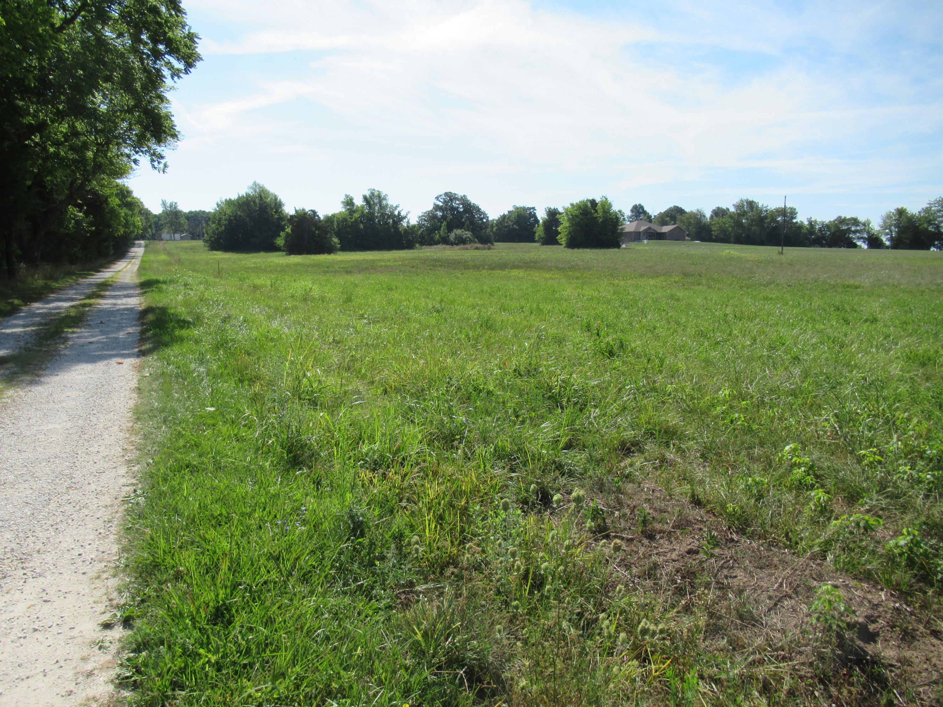 6 Ac South State Highway 125 Rogersville, MO 65742
