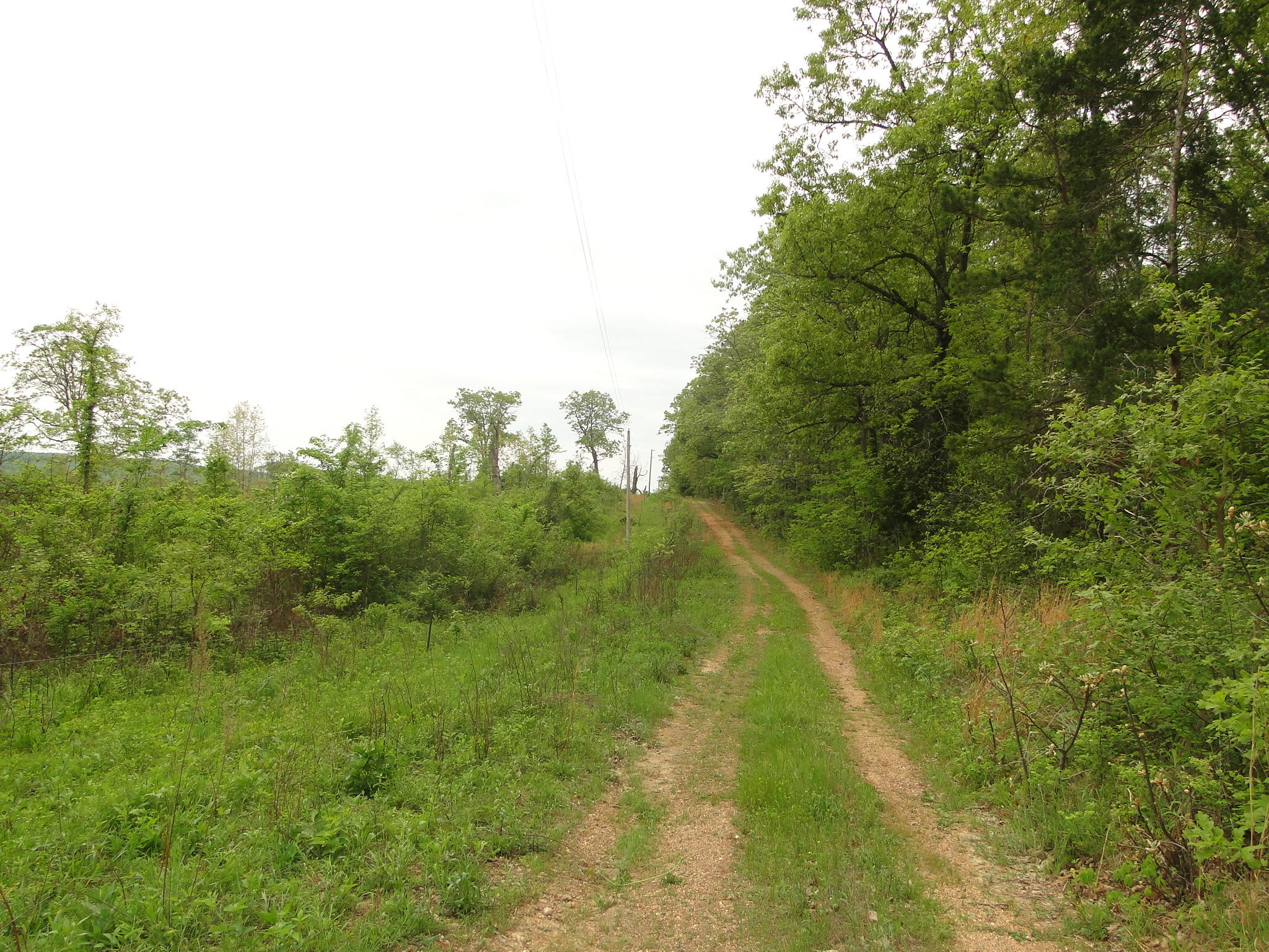 County Road E-76 232