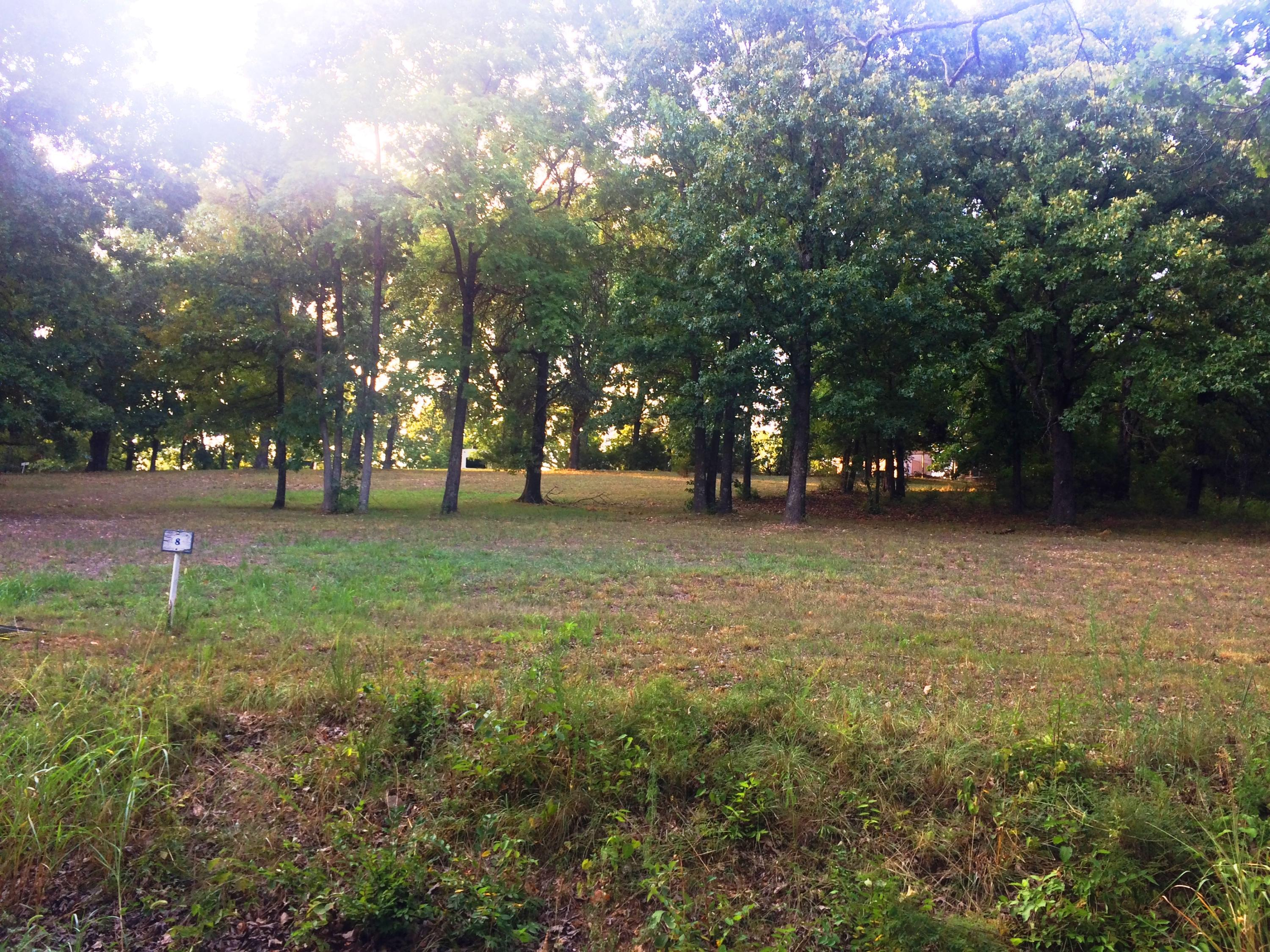 Lot 8 Mule Barn Drive Cape Fair, MO 65624