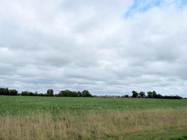 Tbd Farm Road Republic, MO 65738