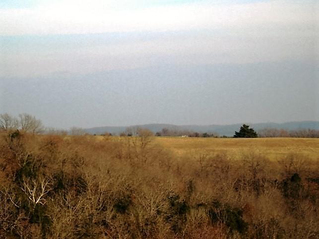 Wolf Road Walnut Shade, MO 65771