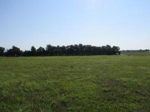 1552 North Farm Road 63