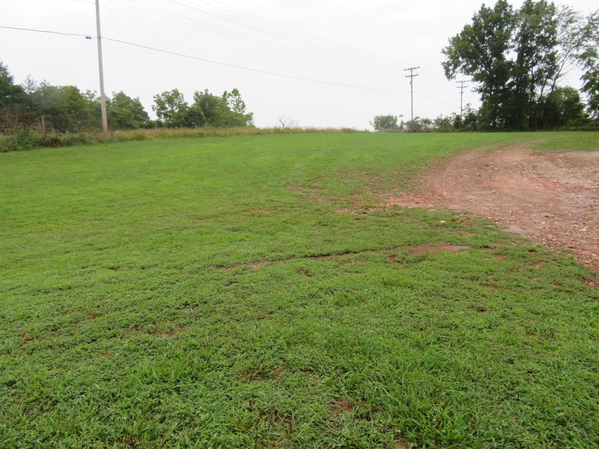 Lot 31 Kelby Creek Ph 2 Nixa, MO 65714
