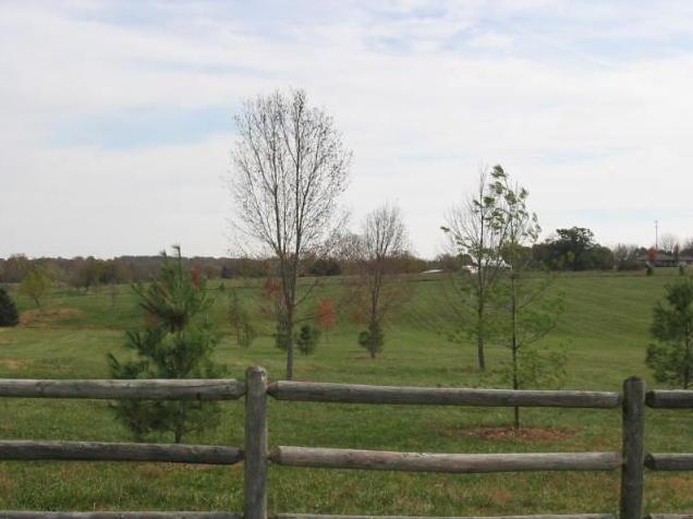 4520 South Farm Rd 189 Rogersville, MO 65742