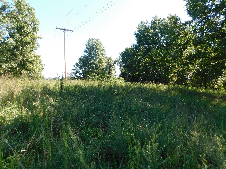 Tbd Forsyth-Taneyville Road Forsyth, MO 65653