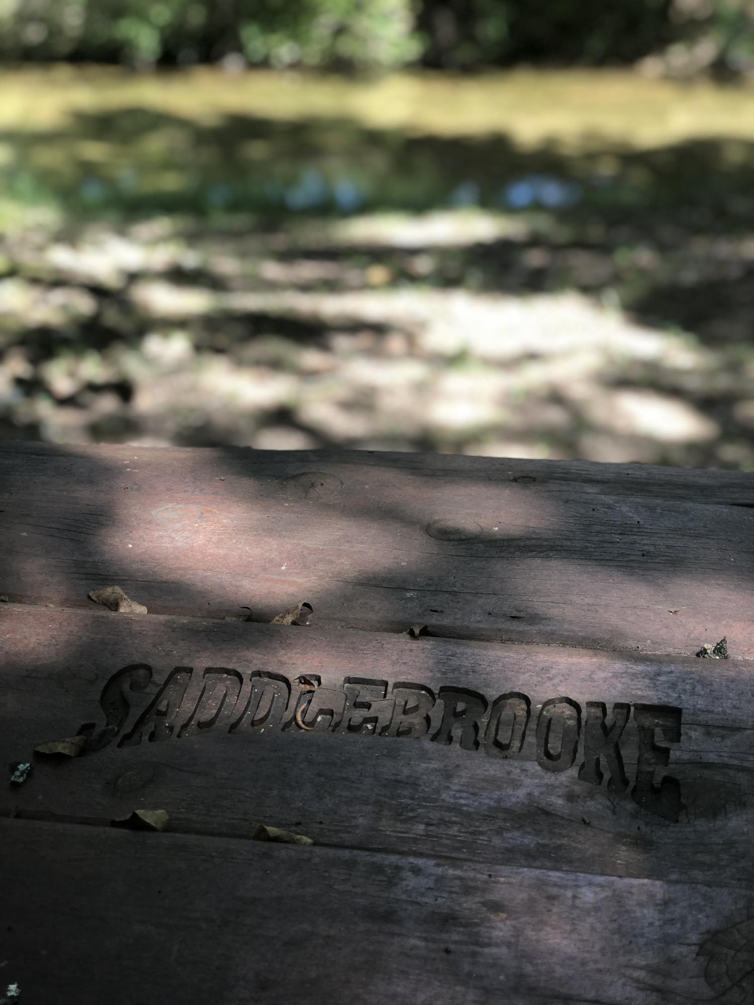 153 Ridgecrest Drive Saddlebrooke, MO 65630