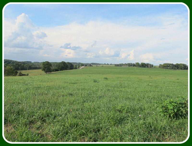 Tract-7 Tennessee Road Ozark, MO 65721