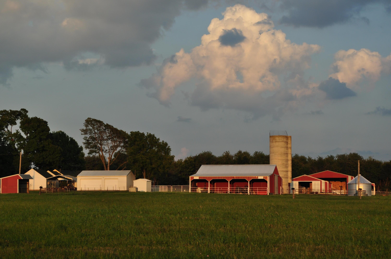11650 Farm Road 94