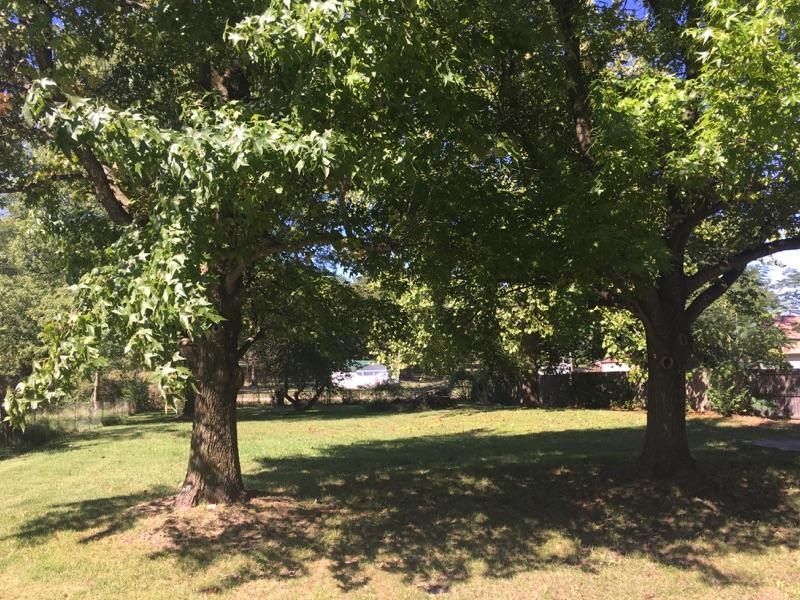345 Meadowlark Street Fair Grove, MO 65648