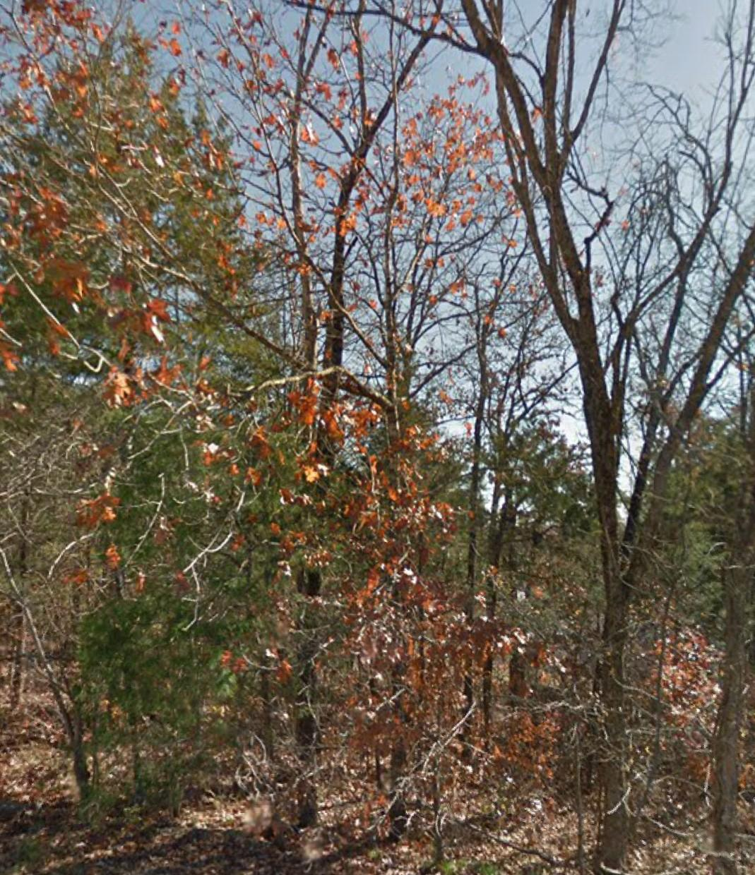Lot 4a Eric Road Kirbyville, MO 65679