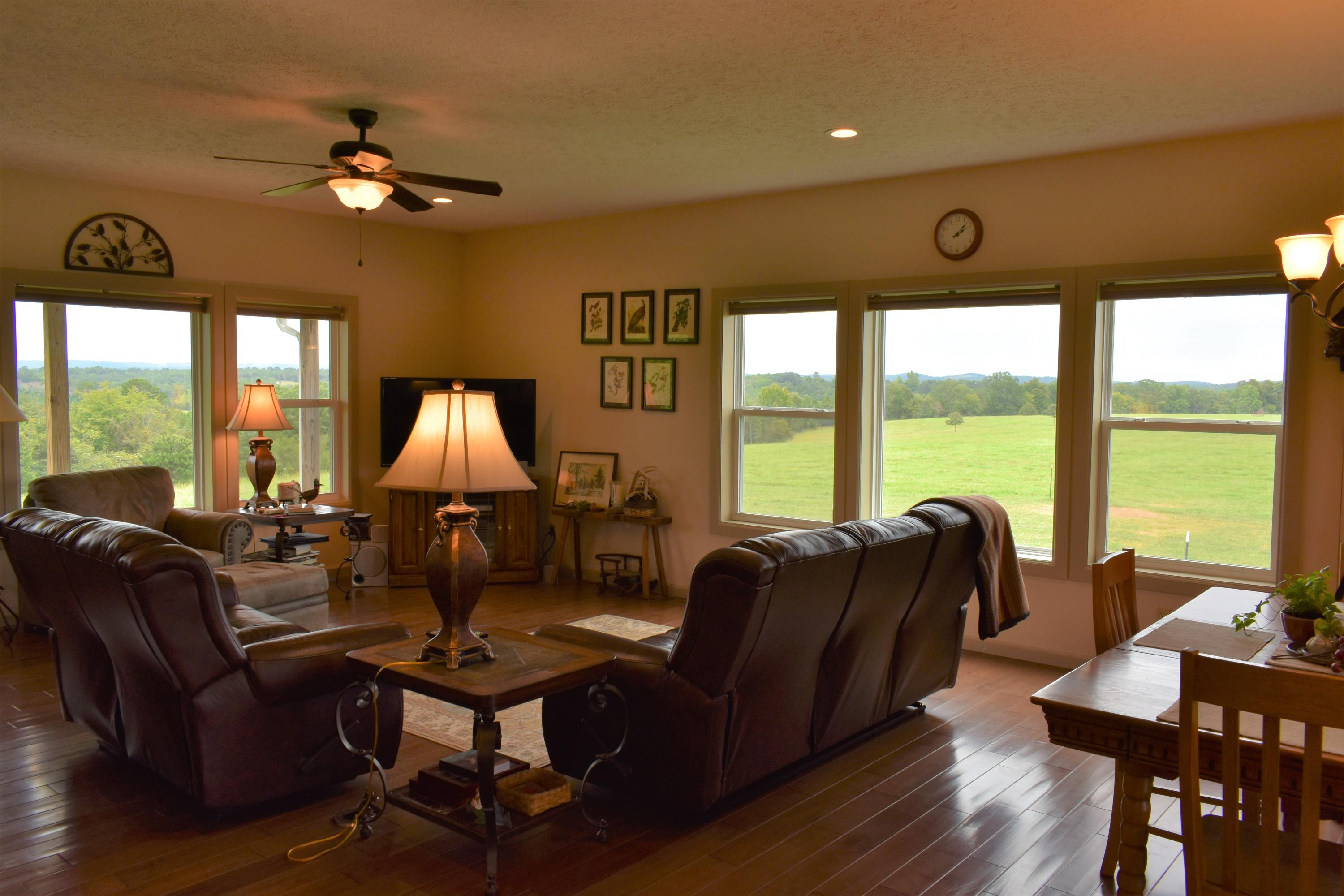 1445 Eagle Ridge Road Protem, MO 65733