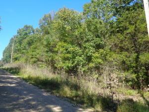Lot27blk25 Deerfield Rd Merriam Woods, MO 65740