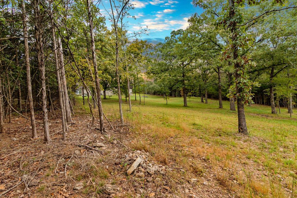 231 Lookout Ridge Road Branson, MO 65616