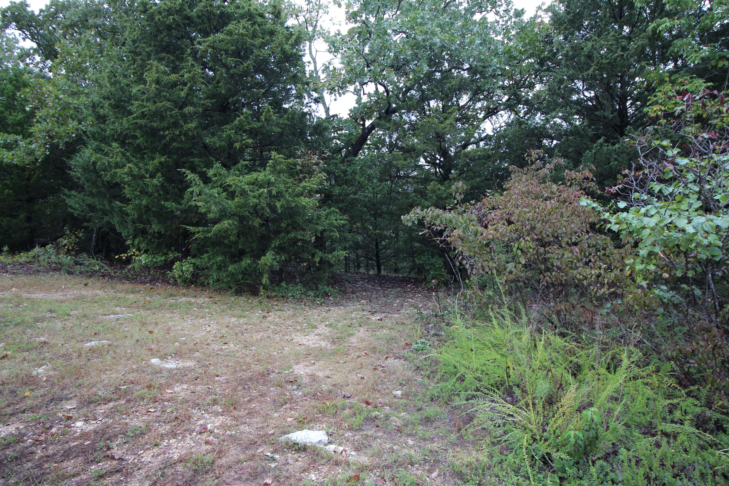 429 Silver Oak Lot Lane Branson West, MO 65737