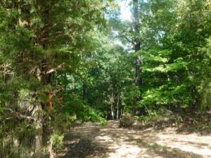 Tbd County Road 622