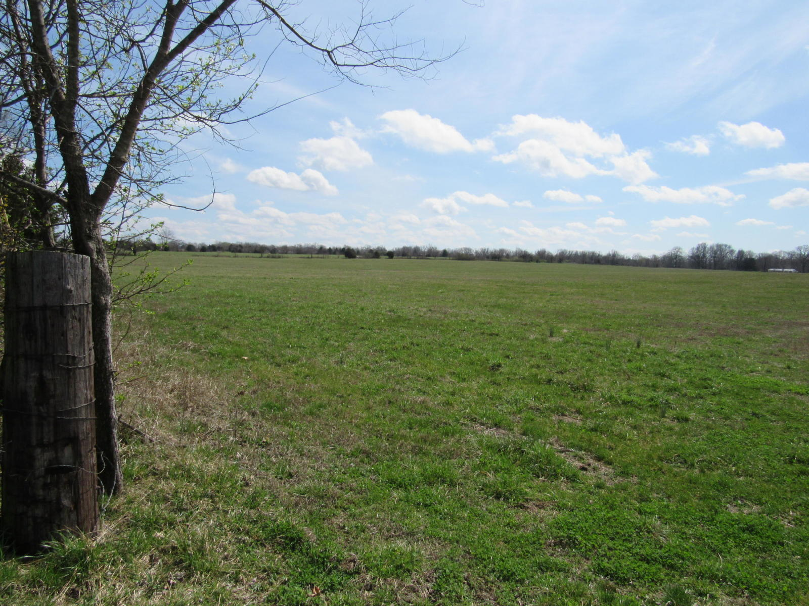 Tbd Two Rivers Road Highlandville, MO 65669