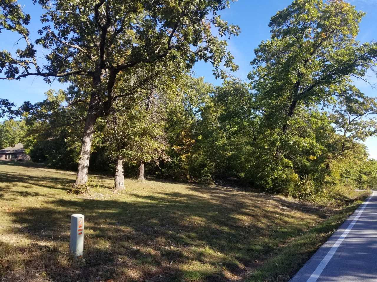 Lot 29 Mill Creek Shores Lampe, MO 65681