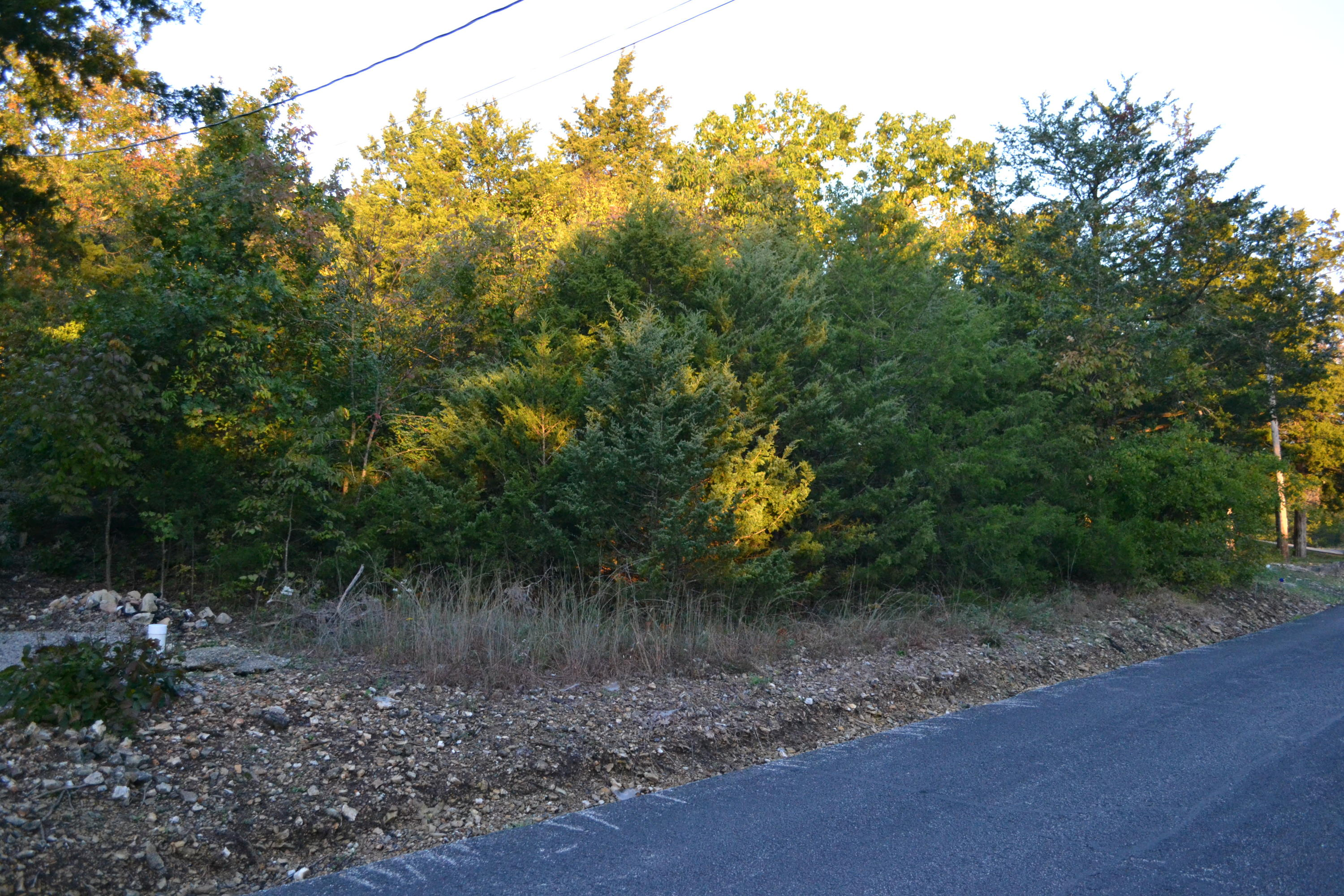 Lot 2 Oak Kimberling City, MO 65686