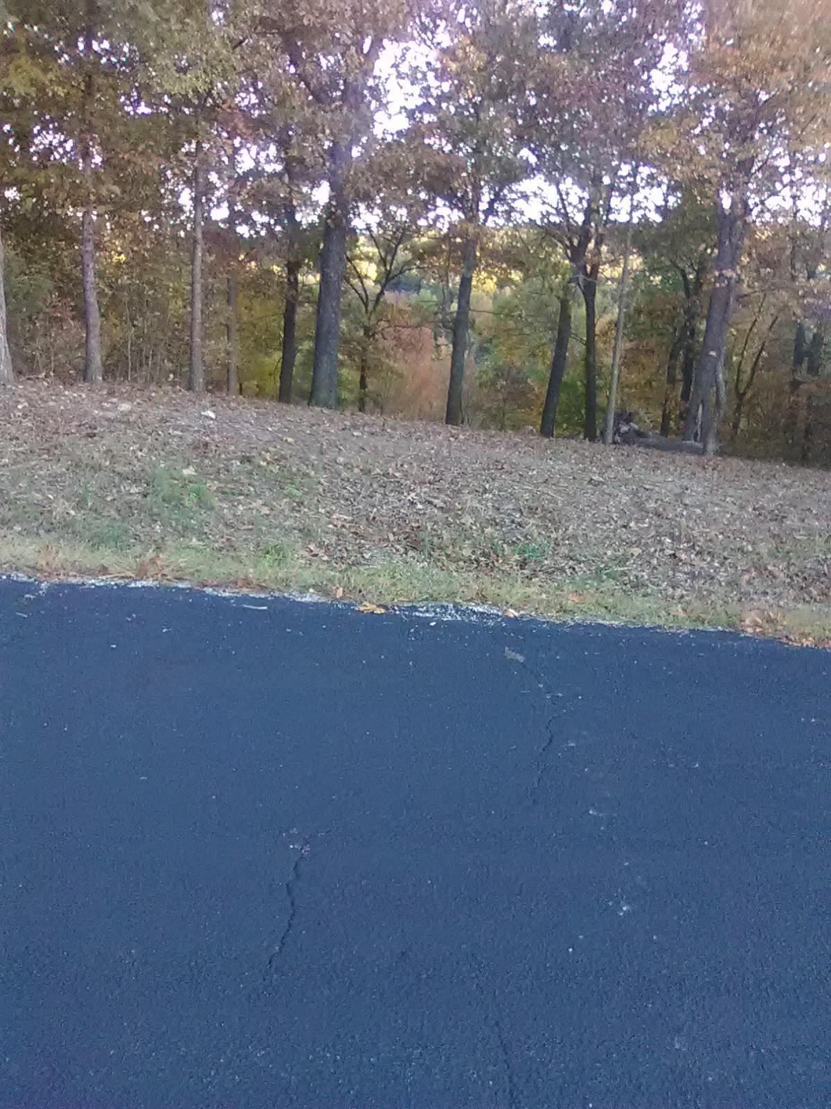 123 Foxfire Lane Shell Knob, MO 65747