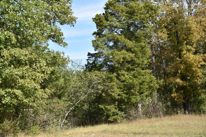 Tbd 56 Acres Us Hwy 160 Merriam Woods, MO 65740