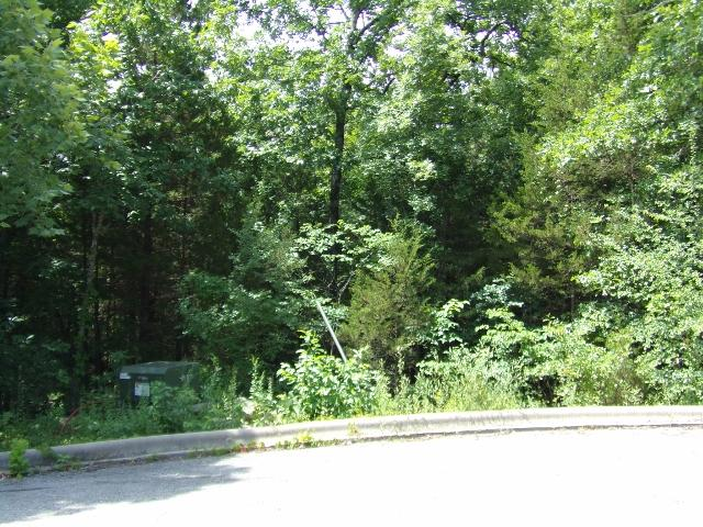 Tbd Emerald Pointe Phase 8 Lot 182 Hollister, MO 65672