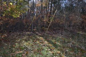 Lot 212 Lone Oak Drive