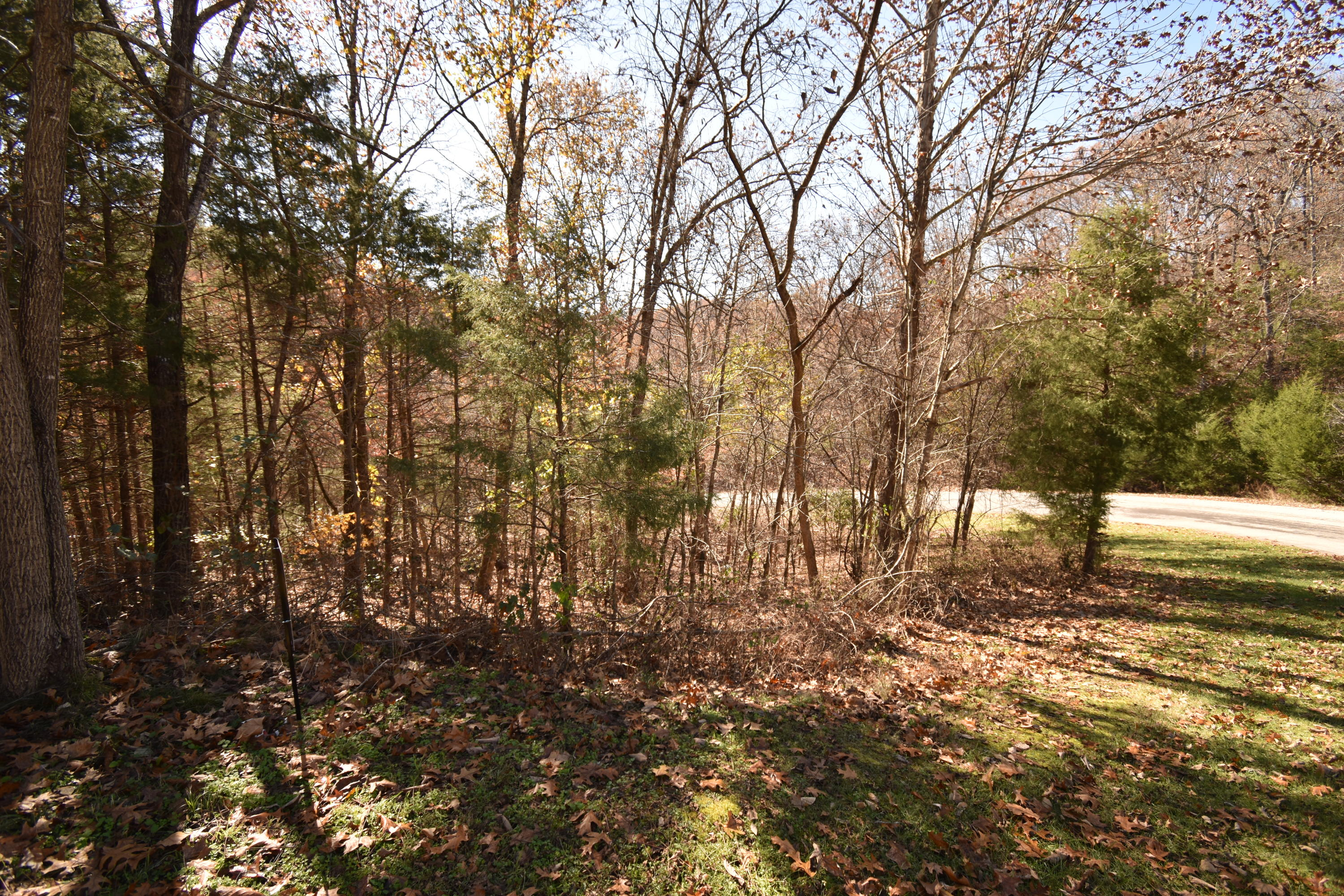 Lot 122 North Walnut Springs Drive Cape Fair, MO 65624